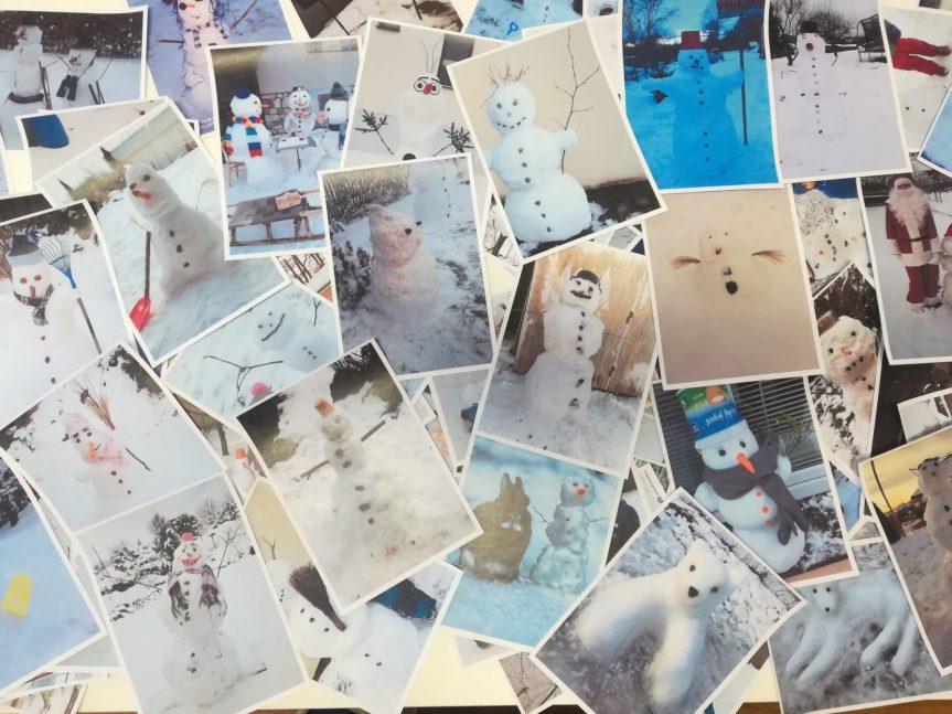 Sněhuláková výzva – zhodnocení